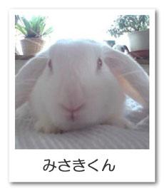 うさぎ色のページ☆みさき