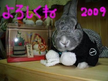 2009ご挨拶☆来夢