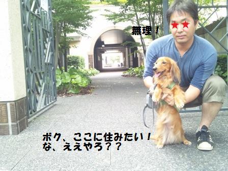 代官山アドレス3