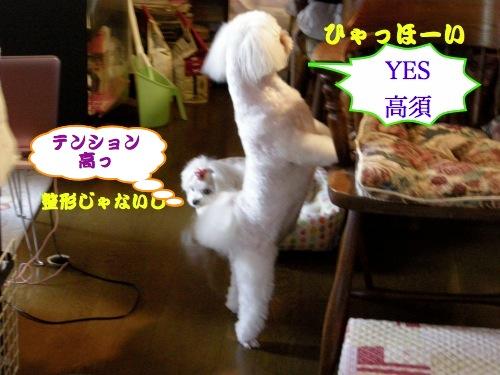 るる忍法「YES!高須!の術」