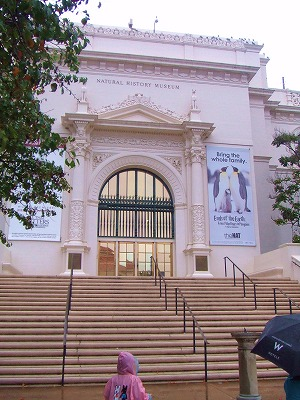 s-自然史博物館20111116