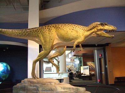 s-恐竜展示20111116