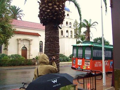 s-バス20111117