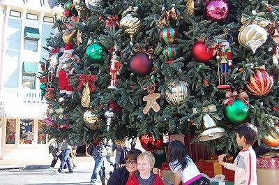 s-20111201クリスマスツリー②