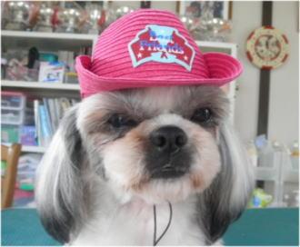 「この帽子は好きじゃないの・・・」