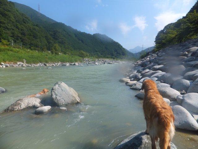 丹沢 河内川 2012.7.26