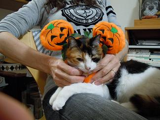 Happy Halloween_Kiara