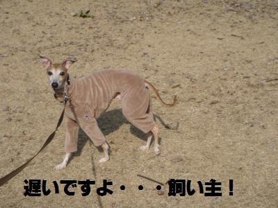 007_convert_20110220123056.jpg