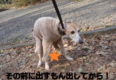 014_convert_20110220123631.jpg