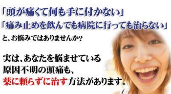 head-H3_20120406142159.jpg