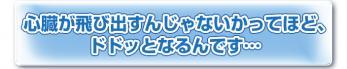midashi2-H2.jpg