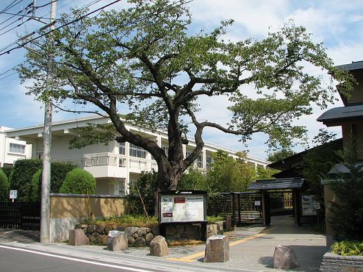 盆栽博物館