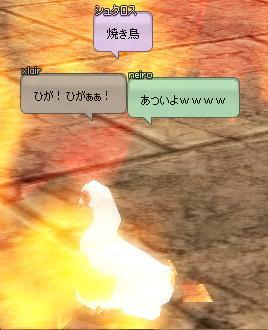 mabinogi_2012_10_22_033.jpg