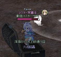 mabinogi_2013_12_01_011.jpg