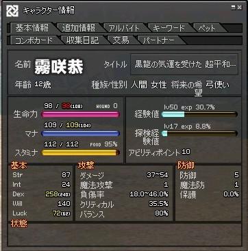 mabinogi_2012_01_28_001.jpg