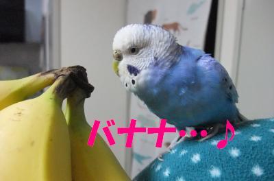 バナナ…♪