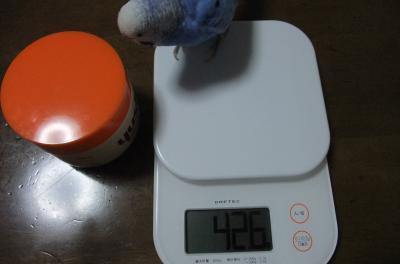42.6グラム