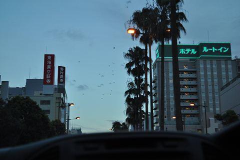 20120818 097_R