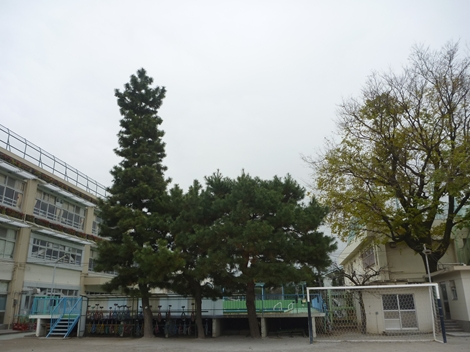 20121215 001_R