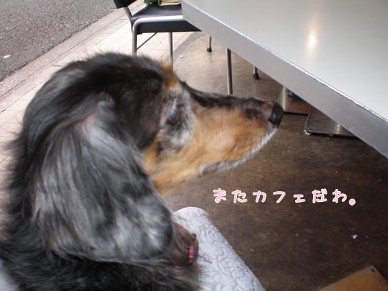 0611駒沢カフェ