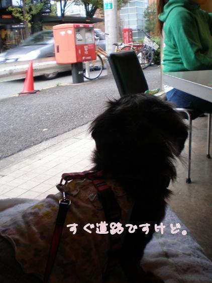 0611駒沢カフェは道路沿い