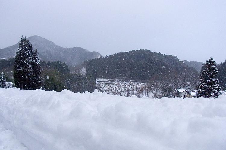 2011-0102-5.jpg