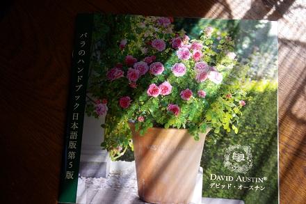 カタログ来ました。