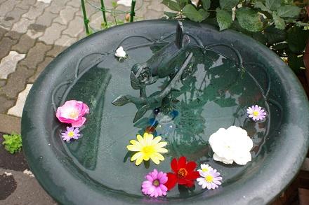 花柄摘みのあと…。