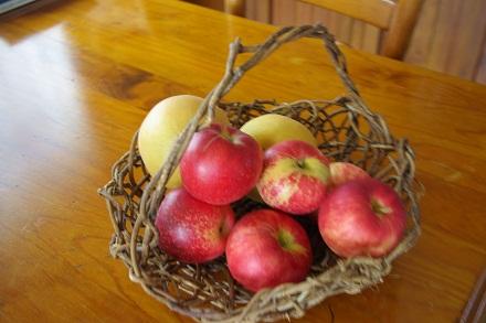 りんごとなし