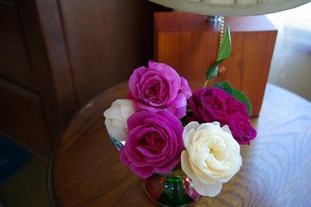 今日のお花~♪