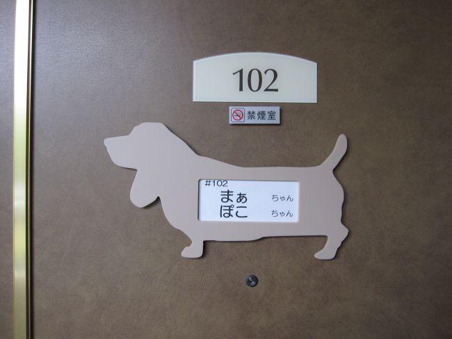 20121207234913e07.jpg