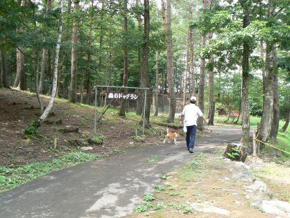 森のドッグラン