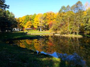 edit_2014-10-15_14-34-47-787.jpg
