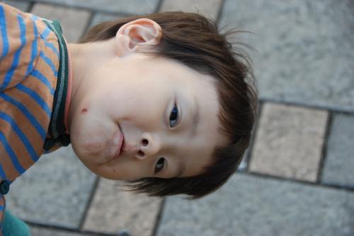 022_convert_20101121084951.jpg