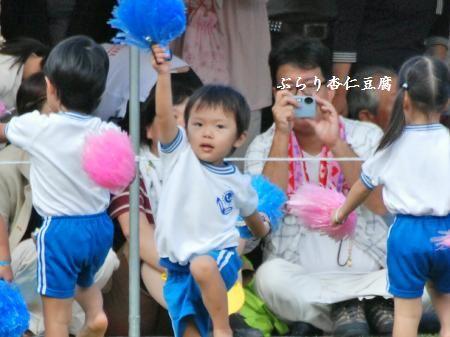 037_convert_20101010182836.jpg