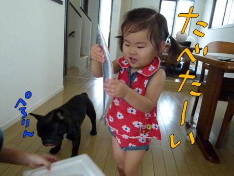 akiaji3.jpg