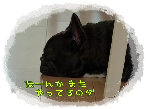 akimade6.jpg