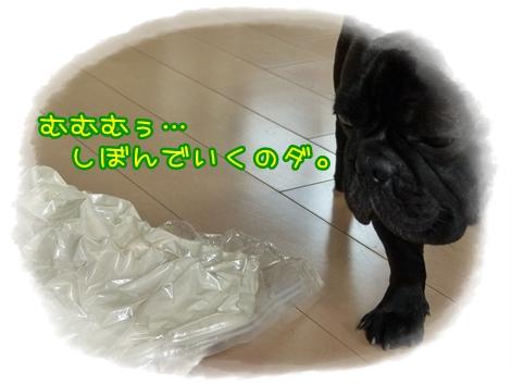 akimade8.jpg