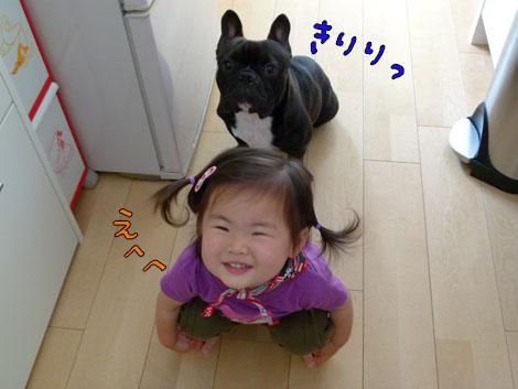 amenohi10.jpg