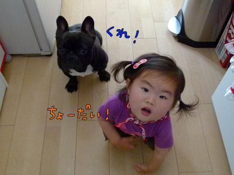 amenohi8.jpg