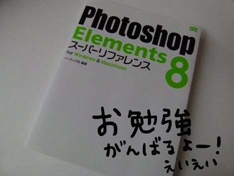 bumboo2.jpg