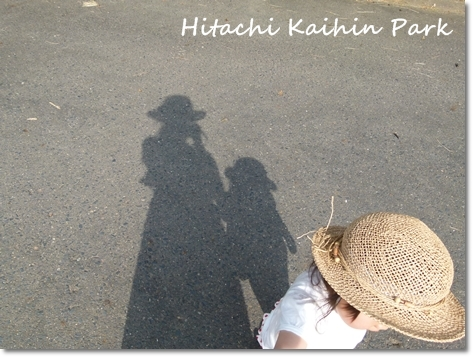 hitachi10.jpg