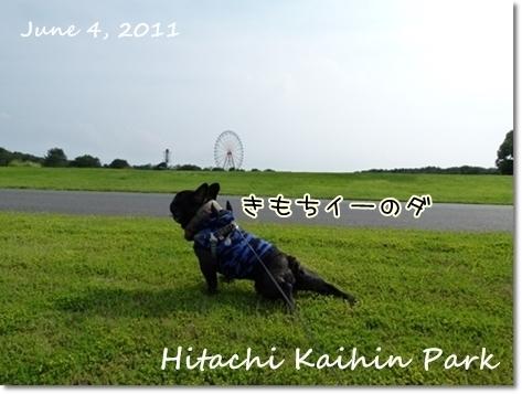 hitachi7.jpg