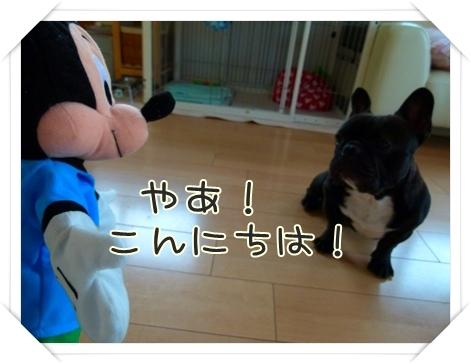 kurukuru4.jpg