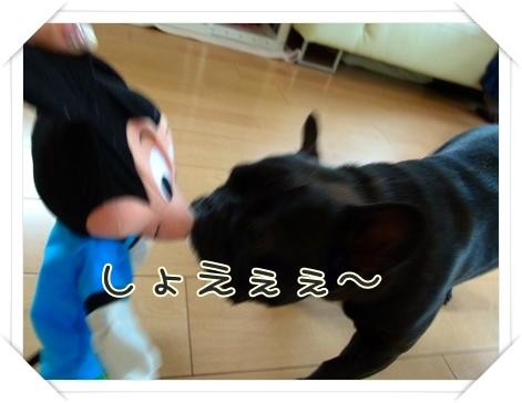 kurukuru6.jpg
