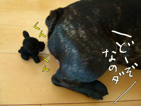magokoro5.jpg