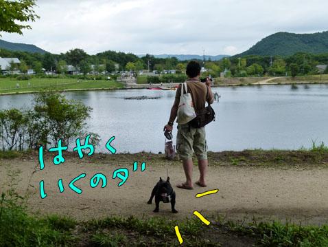 natutabi106.jpg