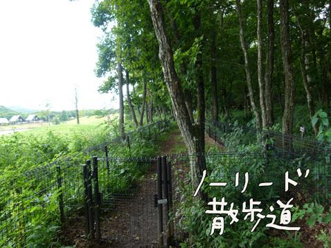 natutabi107.jpg