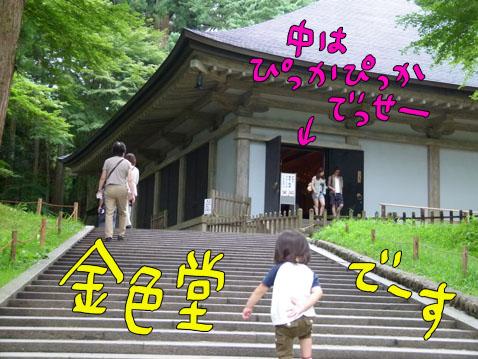 natutabi11.jpg