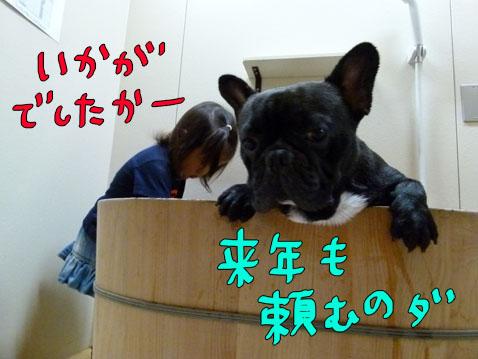 natutabi115.jpg